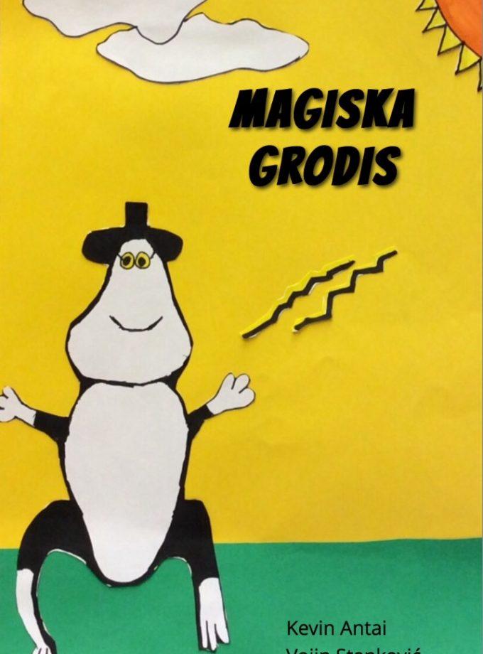 Magiska Grodis