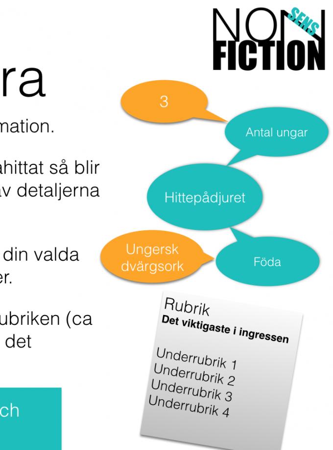 NonSens Fiction – lektionsupplägg