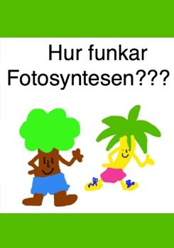 andrea-westergren-hur-fungerar-fotosyntesen.jpg